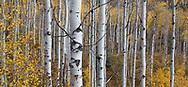Near Redstone Colorado, USA