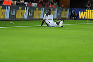 Bafetimbi Gomis of Swansea city looks on.  Barclays Premier league match, Swansea city v West Ham Utd at the Liberty Stadium in Swansea, South Wales  on Sunday 20th December 2015.<br /> pic by  Andrew Orchard, Andrew Orchard sports photography.