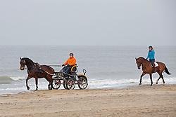 Beach training met Marcella De Kam (NED) en Christiaan Provoost (NED)<br /> Strand Domburg 2014<br /> © Dirk Caremans