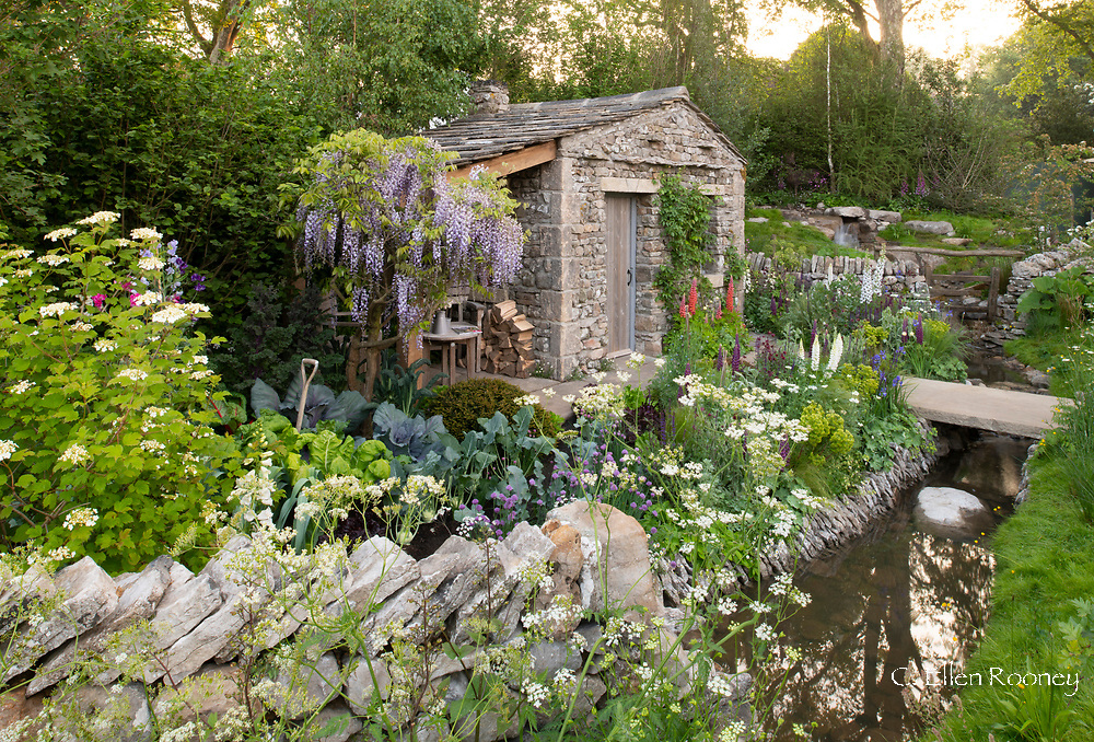 A cottage garden surrounding a stone bothy beside a stream in the Welcome to Yorkshire Garden at the RHS Chelsea Flower Show 2018, London, UK