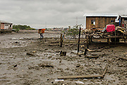 2016/10/06 - Muisne, Ecuador: A man carries a sofa back to the refurbish hut in the island of Muisne, Ecuador, 6th October 2016. Even living in precarious conditions the inhabitants of Muisne refuse to leave the island, even when it's recommended by the Government, since it is considered a high-risk area. The population in the island claim that they were born there and they don't know any other way of living, so they refuse the abandon the place that they call home for generations. (Eduardo Leal)