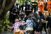Enforcement agents from the National Eviction Team intervene to prevent environmental activists from HS2 Rebellion standing in the river Colne from disrupting the removal of an ancient alder tree as part of works for the HS2 high-speed rail link on 24th July 2020 in Denham, United Kingdom. A large security operation involving officers from the Metropolitan Police, Thames Valley Police, City of London Police and Hampshire Police as well as the National Eviction Team ensured the removal of the tree by HS2 despite the protests by activists.