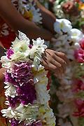 Ship greeters, Hakahau, Mt. Otave, Ua Pou, Marquesas, French Polynesia<br />