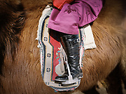 Details of riding boots.<br /> <br /> A participant to a camel race festival in Bulgan. Road trip with a Jeep in the Gobi region.<br /> <br /> Travels in the Gobi desert region.