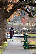 A woman braves the Melbourne weather to exercise along the Yarra River during COVID-19 in Melbourne, Australia. Victoria has recorded 14 COVID related deaths including a 20 year old, marking the youngest to die from Coronavirus in Australia, and an additional 372 new cases overnight. (Photo by Dave Hewison/Speed Media)