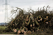 A pile of destroyed trees and hedgerows is pictured inside a HS2 compound on 18th March 2021 in Wendover, United Kingdom. Considerable preparatory work of this type is currently taking place between Great Missenden and Wendover to the north of the Chiltern tunnel section of the £106bn HS2 high-speed rail link.
