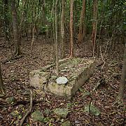 Grave, Par Force plantation