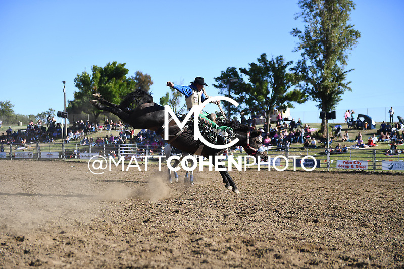 Allen Boore, Marysville 2018<br /> <br /> <br /> UNEDITED LOW-RES PREVIEW<br /> <br /> <br /> File shown may be an unedited low resolution version used as a proof only. All prints are 100% guaranteed for quality. Sizes 8x10+ come with a version for personal social media. I am currently not selling downloads for commercial/brand use.