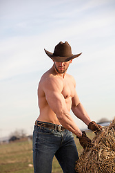muscular cowboy without a shirt lifting bales of hay