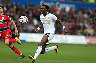 Tammy Abraham of Swansea city in action. Premier league match, Swansea city v Huddersfield Town at the Liberty Stadium in Swansea, South Wales on Saturday 14th October 2017.<br /> pic by  Andrew Orchard, Andrew Orchard sports photography.