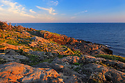 Rocky shoreline st sunrise<br /> Boar's Head on Long Island on the DIgby Neck<br /> Nova Scotia<br /> Canada