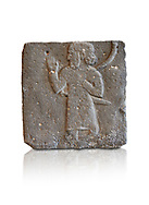 Hittite relief sculpted orthostat from a processing person from Tell Ahmar ancient Til Barsip, Syria, iX cent BC, Louvre Museum. White background