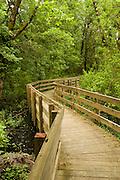 USA, Oregon, Ankeny National Wildlife Refuge, Rail Trail