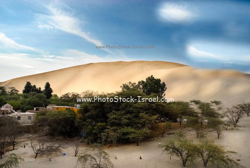 Argentina desert landscape