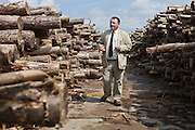 Gary Battell from Suffolk County Council inspects logs stored at a dissused airfield to see if they are ready for chiping. Suffolk county council sustainable wood chip production.