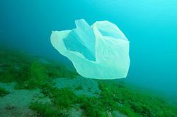 Plastikmuell treibt unter Wasser, plastic waste floating under water, Bali, Indonesien, Indopazifik, Bali, Indonesia Asien, Indo-Pacific Ocean, Asia