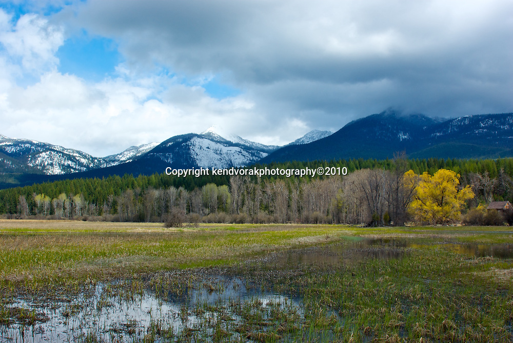 Swan River Wildlife Refuge is located just south of Swan Lake in western Montana. It is an area that changes every time you visit.