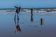 June 3, 2015 - Hastings, England, UK - Two British men, are searching in invertebrates trace on the sea shore of Hastings, a town in the southeast of England. As the seagulls trace their holes searching for food. (Credit Image: © Vedat Xhymshiti/ZUMA Wire)