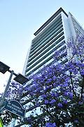 Arquitectura, edificios y rascacielos en Santiago de Chile.<br /> <br /> Edición de 3 | Víctor Santamaría.