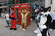 Furries gathering in London, UK. The furry fandom is a subculture interested in fictional anthropomorphic animal characters with human personalities and characteristics. Examples of anthropomorphic attributes include exhibiting human intelligence and facial expressions, the ability to speak, walk on two legs, and wear clothes. Furry fandom is also used to refer to the community of people who gather on the Internet and at furry conventions.