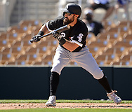 GLENDALE, ARIZONA - MARCH 08:  Adam Eaton #12 of the Chicago White Sox squares around to bunt against the Los Angeles Dodgers on March 8, 2021 at Camelback Ranch in Glendale, Arizona.  (Photo by Ron Vesely) Subject:  Adam Eaton