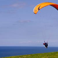 USA, California, San Diego. Paraglider taking off at Torrey Pines.