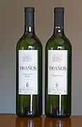 Bottles of 100 Anos (on hundred years) Sauvignon Blanc 2003 and Chardonnay. Bodega Plaza Vidiella Winery, Las Brujas, Canelones, Uruguay, South America