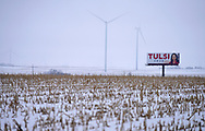A billboard for Democratic 2020 U.S. presidential candidate Tulsi Gabbard is seen in a foggy, snow-covered corn field in Stuart, Iowa U.S. January 28, 2020.     REUTERS/Rick Wilking