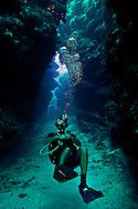 Diving Eagles Nest, West Side Grand Cayman