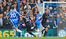 Brighton & Hove Albion's Glenn Murray falls as he makes an attempt on goal during the Premier League match at the AMEX Stadium, Brighton.