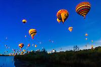 Hot air balloons flying low over the Rio Grande River just after sunrise, Albuquerque International Balloon Fiesta, Albuquerque, New Mexico USA.