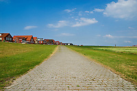 brick pathway near village, Island of Juist, Germany