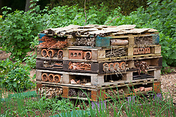 Pile of pallets for encouraging insects