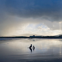 Stormy Sky over Reenroe Beach with dogs, County Kerry, Ireland / cr097
