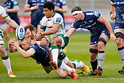 Sale Sharks wing Aaron Reed and London Irish Fullback James Stokes stretch for the ball during a Gallagher Premiership Round 14 Rugby Union match, Sunday, Mar 21, 2021, in Eccles, United Kingdom. (Steve Flynn/Image of Sport)