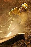 7 May 2009 - Santa Barbara, CA -Fire crews work to extinguish Jesusita wildfire hot spots in the foothills of in Santa Barbara, California.  Photo Credit: Rod Rolle/Sipa Press,  21 August 2009-Santa Barbara, CA: