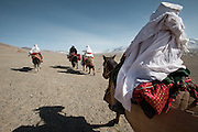 After a two-day horse journey, Ikhbal will soon arrive at her husband's camp, near the China border, escorted by the groom's best man. The majority of women have never been more than a few miles from where they were born. This is Ikhbal's biggest journey..With Ikhbal, the recently married woman  moving for the first time to her husband's camp. On horse back, riding between Andemin camp (Abdul Haq camp) and Tash Seri camp (Mustafa Qol's camp)...Trekking through the high altitude plateau of the Little Pamir mountains, where the Afghan Kyrgyz community live all year, on the borders of China, Tajikistan and Pakistan.