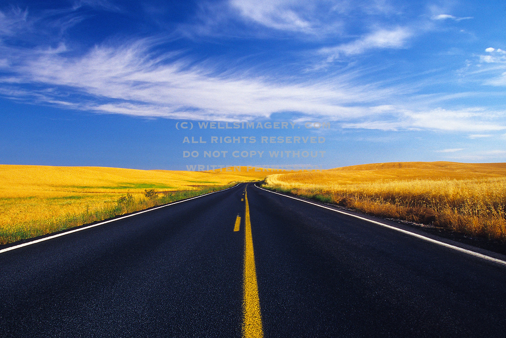 Image of a country road through the golden wheatfields in the Palouse near Steptoe, eastern Washington, Pacific Northwest by Randy Wells