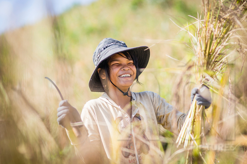 Portrait of a cheerful young farmer during a harvest, Loc Bac, Vietnam, Southeast asia