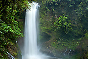 The Magia Blanca Waterfall On The Trail At The La Paz Waterfall Gardens In Costa Rica.