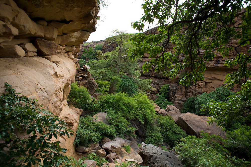 The canyon formed near Kani-Kombolé and Djiguibombo is a shady place with lots of trees and waterfalls during the rainy season. The Dogon Country is the most visited part of Mali with tourists visiting its tipical  villages that can be located on the cliff, on the sandy plain or in the rocky plateau