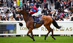Unforgetable Filly ridden by Jockey Josephine Gordon goes  to post for the Duke Of Cambridge Stakes