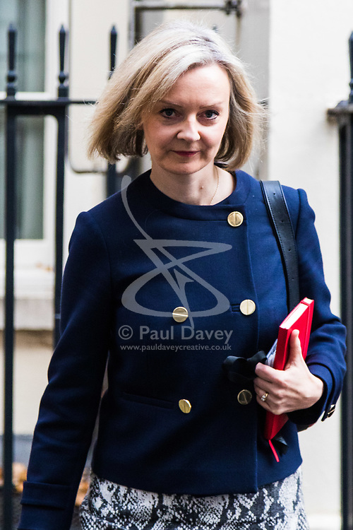 London, November 22 2017. Chief Secretary to the Treasury Elizabeth Truss leaves the UK cabinet meeting on budget day at Downing Street. © Paul Davey