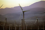 A  28.4 MG FILE FROM FILM OF:.A wind mill farm, Palm Springs, California. Photo by Dennis Brack
