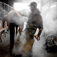 """Farrier RJ Goff shoes a horse using the hot shoeing technique at Vixen Trail Farm in Castle Hayne, N.C After his career as a rodeo bareback bronco rider ended in the '70s, Ritner Goff started shoeing horses. Jump ahead to present day and he recently marked his 25th year as a certified farrier. His son, RJ Goff, also earned his certification from the American Farrier Association. He has been working with the business for the past eight years. """"He grew up in the font seat of a horse shoeing rig,"""" Ritner Goff said. Together the two operate Ritner Goff Pro Horseshoeing Services in Burgaw, N.C. servicing the Pender and surrounding counties. Photo by Mike Spencer"""