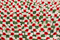 © Licensed to London News Pictures. 04/11/2019. London, UK. Volunteers from The British Legion place tributes in the Fields of Remembrance at Westminster Abbey. Each cross carries a personal message to someone who lost their life in the Service of the United Kingdom. . Photo credit: Dinendra Haria/LNP