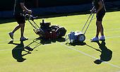 Day 7 Wimbledon
