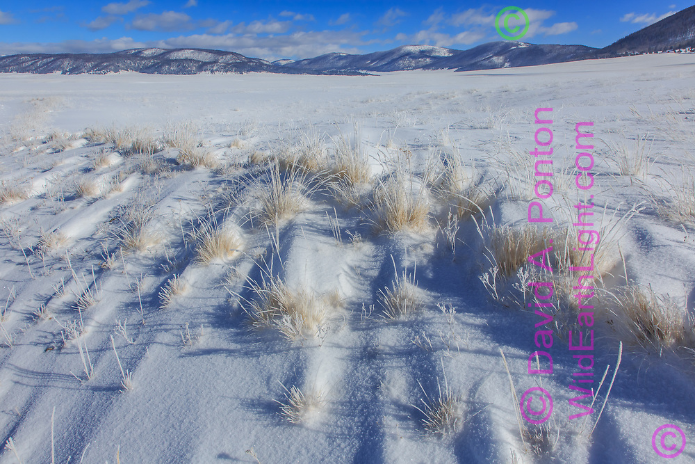 New snow in the Valle Grande, with small snow drifts formed downwind of each clump of grass, leading to the mountains that form the east rim of the caldera, Valles Caldera National Preserve, © David A. Ponton