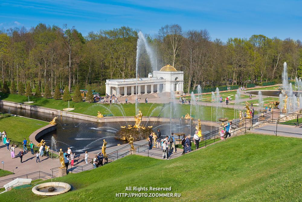 Samson Fountain And Sculptures of The Grand Cascade In Peterhof, Saint Petersburg