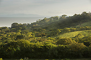 Green landscape with a forest on a hillside and a lake in the background, Ometepe Island, Nicaragua